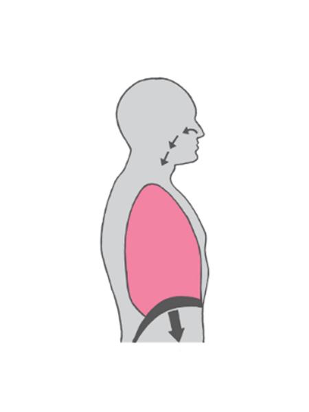 pelvic floor muscle release: SNIFF IN